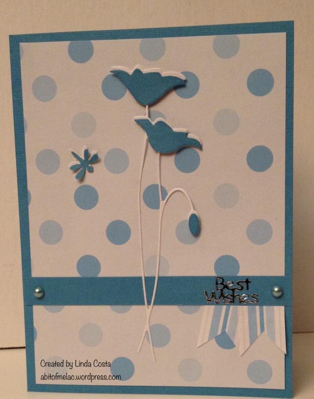 108-LAC Poppy Blue 6-2015