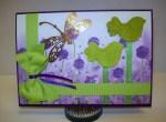 Birdies green & purple