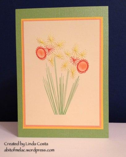 LAC Daffodil EOP 6-2014