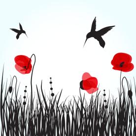36-free_hummingbirds_shutterstock_59623378_web