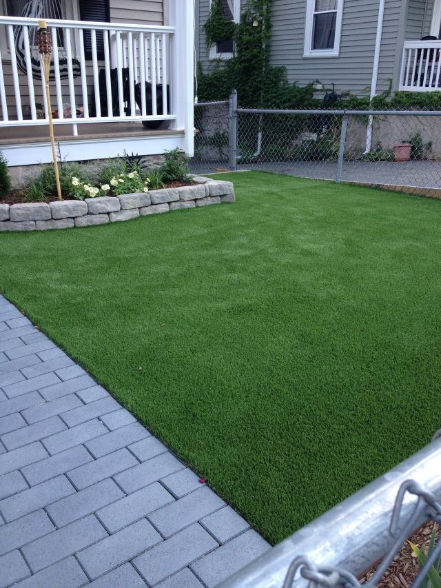 Grass 7-13-16 5