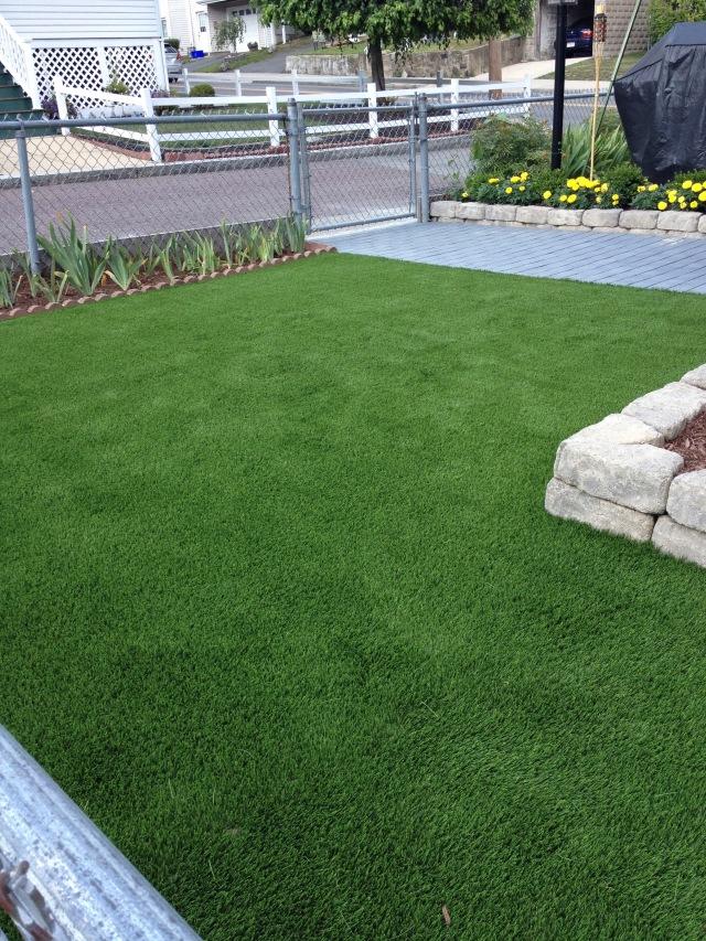 Grass 7-13-16 8