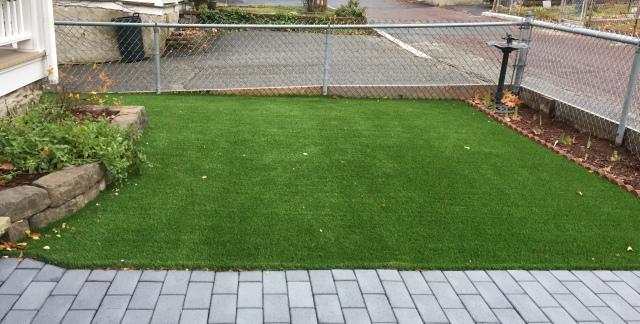 lawn-12-2016